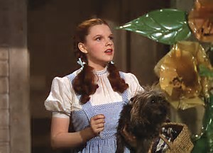 """I have a feeling we're not in Kansas anymore Toto."""